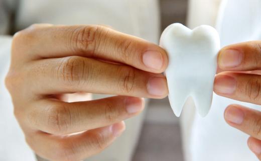 dca-blog_article-32_understanding-your-teeth
